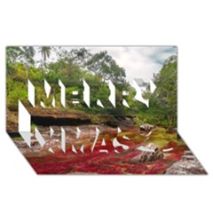 Cano Cristales 1 Merry Xmas 3d Greeting Card (8x4)  by trendistuff
