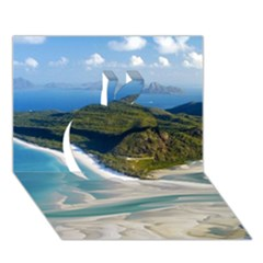 Whitehaven Beach 1 Apple 3d Greeting Card (7x5)  by trendistuff