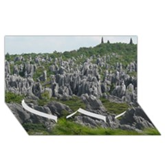 Stone Forest 1 Twin Heart Bottom 3d Greeting Card (8x4)  by trendistuff