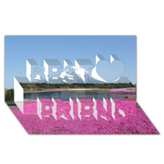Shibazakura Best Friends 3d Greeting Card (8x4)  by trendistuff