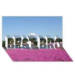 Shibazakura Best Bro 3d Greeting Card (8x4)  by trendistuff