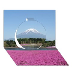 Shibazakura Circle 3d Greeting Card (7x5)  by trendistuff