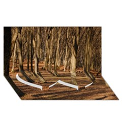 Wood Shadows Twin Heart Bottom 3d Greeting Card (8x4)  by trendistuff