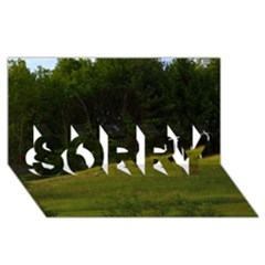 Three Crosses On A Hill Sorry 3d Greeting Card (8x4)  by trendistuff