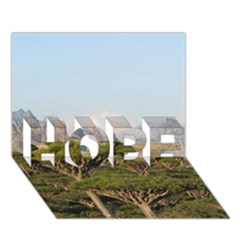 Socotra, Yemen Hope 3d Greeting Card (7x5)  by trendistuff