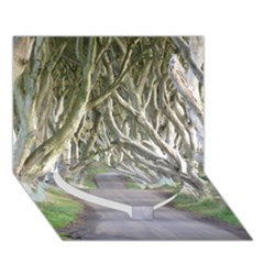 Dark Hedges, Ireland Heart Bottom 3d Greeting Card (7x5)  by trendistuff