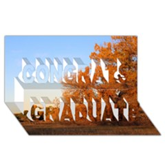 Beautiful Autumn Day Congrats Graduate 3d Greeting Card (8x4)  by trendistuff
