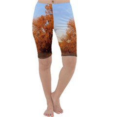 Beautiful Autumn Day Cropped Leggings by trendistuff