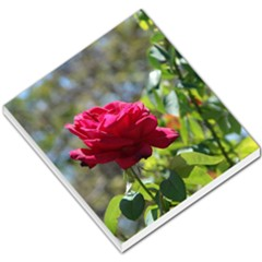 Red Rose 1 Small Memo Pads
