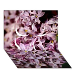Purple Lilacs Clover 3d Greeting Card (7x5)  by trendistuff