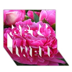Paeonia Eleanor Get Well 3d Greeting Card (7x5)  by trendistuff
