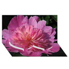 Paeonia Coral Twin Heart Bottom 3d Greeting Card (8x4)  by trendistuff