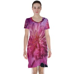 Paeonia Coral Short Sleeve Nightdresses