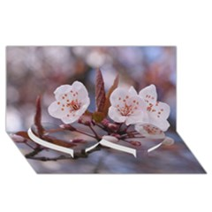 Cherry Blossoms Twin Heart Bottom 3d Greeting Card (8x4)  by trendistuff