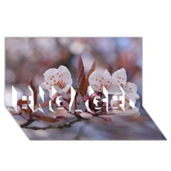 Cherry Blossoms Engaged 3d Greeting Card (8x4)  by trendistuff