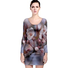 Cherry Blossoms Long Sleeve Bodycon Dresses
