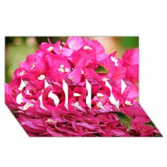 Bougainvillea Sorry 3d Greeting Card (8x4)
