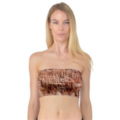 Bryce Canyon Amp Women s Bandeau Tops