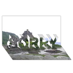 Scotland Eilean Donan Sorry 3d Greeting Card (8x4)  by trendistuff