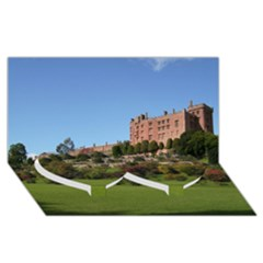 Powis Castle Terraces Twin Heart Bottom 3d Greeting Card (8x4)  by trendistuff