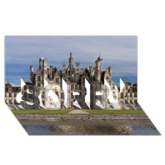 Chambord Castle Sorry 3d Greeting Card (8x4)  by trendistuff