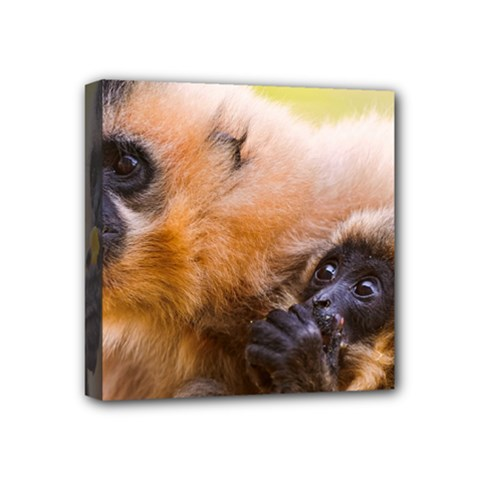 Two Monkeys Mini Canvas 4  X 4  by trendistuff