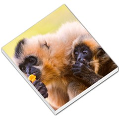 Two Monkeys Small Memo Pads by trendistuff