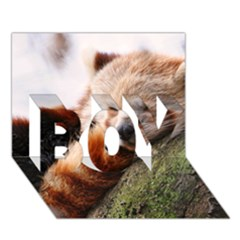 Red Panda Boy 3d Greeting Card (7x5) by trendistuff