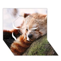 Red Panda Clover 3d Greeting Card (7x5)  by trendistuff