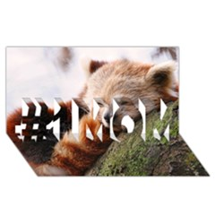 Red Panda #1 Mom 3d Greeting Cards (8x4)
