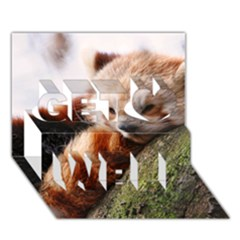 Red Panda Get Well 3d Greeting Card (7x5)  by trendistuff