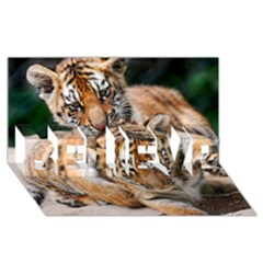 Baby Tigers Believe 3d Greeting Card (8x4)  by trendistuff