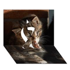 Talk To The Paw Ribbon 3d Greeting Card (7x5)  by trendistuff