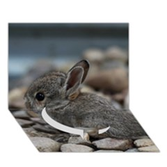 Small Baby Bunny Circle Bottom 3d Greeting Card (7x5)