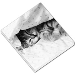 Sleepy Kitty Small Memo Pads by trendistuff