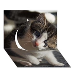 Questioning Kitty Circle 3d Greeting Card (7x5)  by trendistuff
