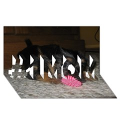 Puppy With A Chew Toy #1 Mom 3d Greeting Cards (8x4)