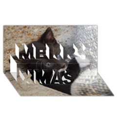 Pretty Blue Eyed Kitty Merry Xmas 3d Greeting Card (8x4)  by trendistuff