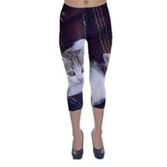 Kitty Twins Capri Winter Leggings  by trendistuff
