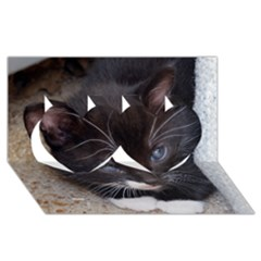 Kitty In A Corner Twin Hearts 3d Greeting Card (8x4)  by trendistuff