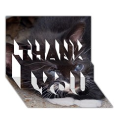 Kitty In A Corner Thank You 3d Greeting Card (7x5)  by trendistuff