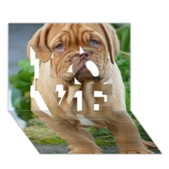 Cute Wrinkly Puppy Love 3d Greeting Card (7x5)
