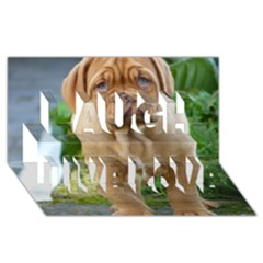 Cute Wrinkly Puppy Laugh Live Love 3d Greeting Card (8x4)