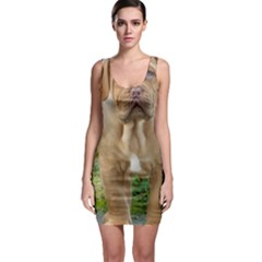 Cute Wrinkly Puppy Bodycon Dresses by trendistuff