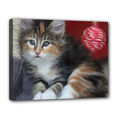 Comfy Kitty Canvas 14  X 11  by trendistuff