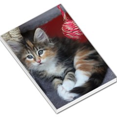 Comfy Kitty Large Memo Pads