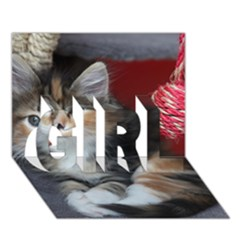 Comfy Kitty Girl 3d Greeting Card (7x5)  by trendistuff
