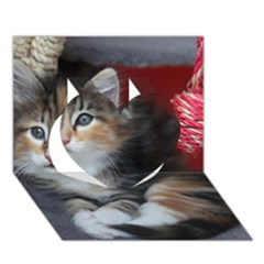 Comfy Kitty Heart 3d Greeting Card (7x5)  by trendistuff