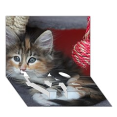 Comfy Kitty Love Bottom 3d Greeting Card (7x5)  by trendistuff