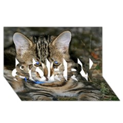 Blue Eyed Kitty Sorry 3d Greeting Card (8x4)  by trendistuff